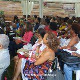 Etat des lieux de la valorisation des plantes médicinales en Martinique