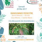 Invitation randonnée Gros-Morne/Sainte-Marie