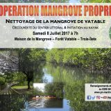 Opération Mangrove propre