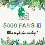 + de 5000 fans Facebook