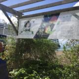 Le grand port maritime et le monde économique mobilisés pour la Candidature de la Martinique au Patrimoine Mondial de l' UNESCO