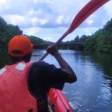 Balade en Kayak commentée et gratuite sur la rivière pilote