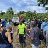 Le Café : une filière d'excellence à la Martinique
